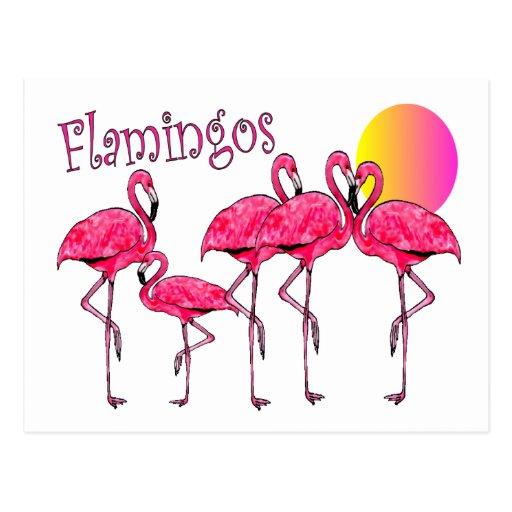 Regalos tropicales del arte del flamenco tarjeta postal