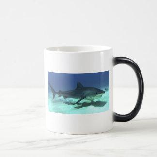 Regalos tropicales del destino del océano del océa taza de café