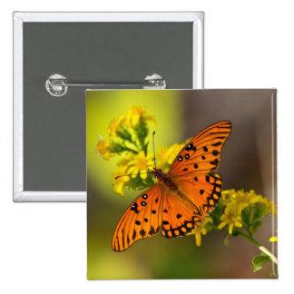 Regalos y ropa de la mariposa del golfo del Fritil Pins