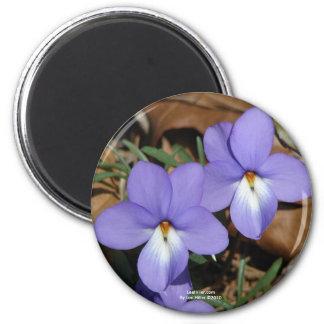 Regalos y ropa de la violeta III de la serradella  Imán Redondo 5 Cm
