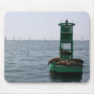 regatta mouse pad