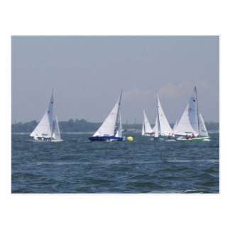 Regatta Sailing Postcard