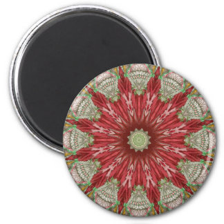 Regency Kaleidoscope No2 2 Inch Round Magnet