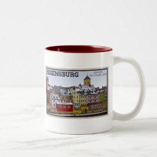 Regensburg - invierno a lo largo del Donau Taza De Dos Tonos