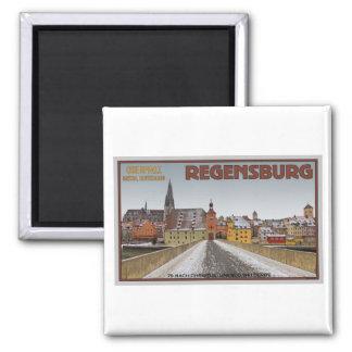Regensburg - View from Steinerne Brücke Magnets