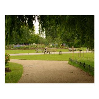 Regent's Park, London Postcard