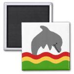 Reggae dolphin magnet
