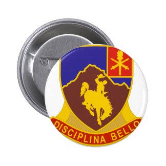 Regimiento 213 pins
