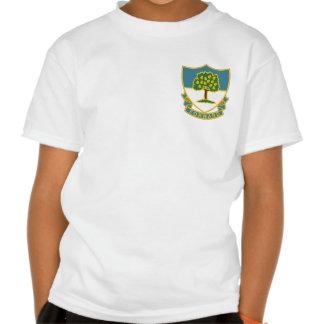 Regimiento 304 camisetas