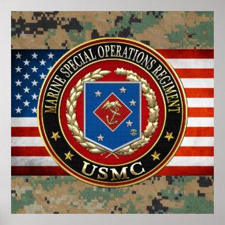 Regimiento marino de las operaciones especiales póster