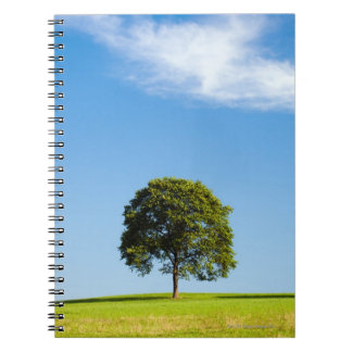 Región de Siegerland, Alemania Spiral Notebook