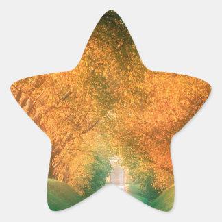 Región Francia del coñac del camino del otoño Pegatina En Forma De Estrella