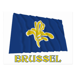 Region of Brussels Waving Flag with Name (Dutch) Postcard