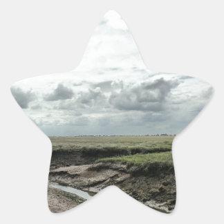 Región pantanosa pegatina en forma de estrella