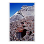 Registro de la ágata - parque nacional del desiert posters