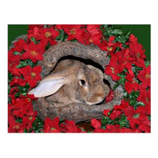 Registro de yule del conejo postales
