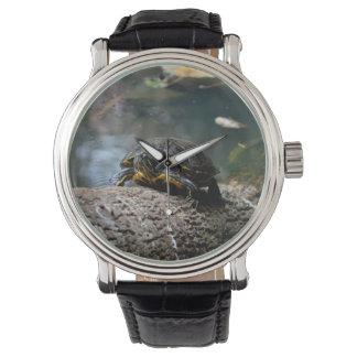 registro que sube pintado de la tortuga del agua relojes de pulsera