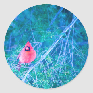 ¡Regla de cardenales! Etiquetas Redondas
