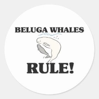 ¡Regla de las BALLENAS de la BELUGA! Pegatina Redonda