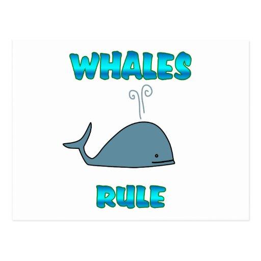 Regla de las ballenas tarjeta postal
