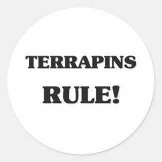 Regla de las tortugas acuáticas pegatina redonda