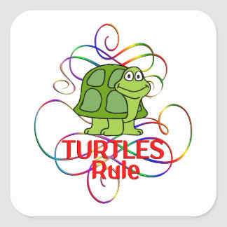 Regla de las tortugas pegatina cuadrada
