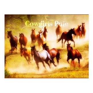 Regla de las vaqueras postal