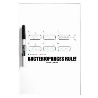 ¡Regla de los bacteriófagos! (DNA del virus de las Pizarras Blancas De Calidad