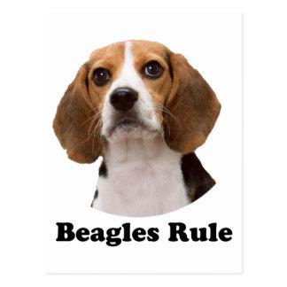 Regla de los beagles tarjetas postales