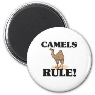 ¡Regla de los CAMELLOS! Iman Para Frigorífico