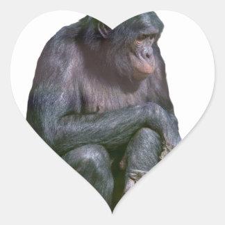 Regla de los chimpancés pegatina en forma de corazón