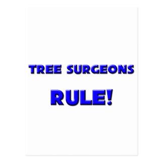 ¡Regla de los cirujanos de árbol Postal