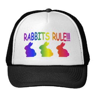 Regla de los conejos gorra