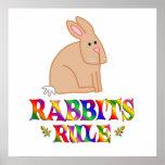 Regla de los conejos poster