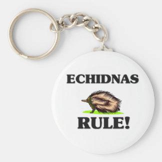 ¡Regla de los ECHIDNAS Llaveros