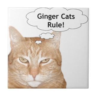Regla de los gatos del jengibre tejas