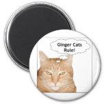 ¡Regla de los gatos del jengibre! Imán De Nevera