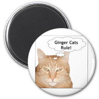 ¡Regla de los gatos del jengibre! Imán Redondo 5 Cm