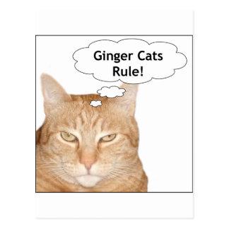 ¡Regla de los gatos del jengibre! Tarjetas Postales