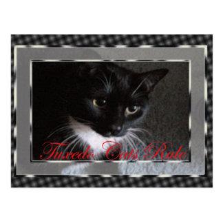 Regla de los gatos del smoking tarjeta postal