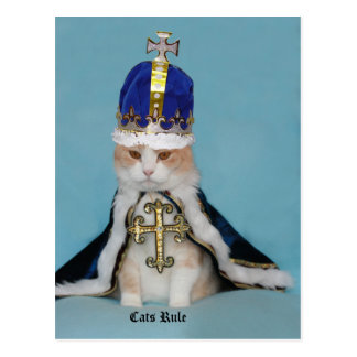 Regla de los gatos tarjeta postal