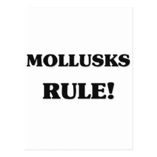 Regla de los moluscos tarjeta postal
