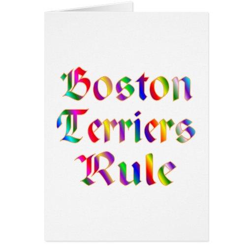REGLA DE LOS TERRIERES DE BOSTON FELICITACION