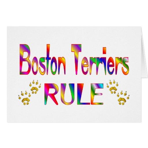 Regla de los terrieres de Boston Felicitaciones