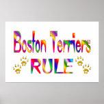 Regla de los terrieres de Boston Impresiones
