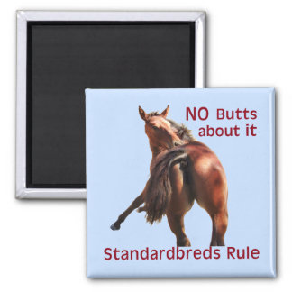 Regla de Standardbreds Imán Cuadrado
