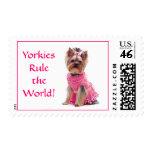 Regla de Yorkies el sello de los E.E.U.U. del mund