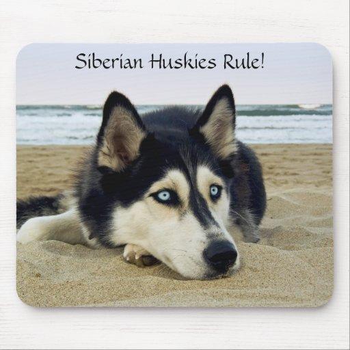 Regla Mousepad de los huskyes siberianos