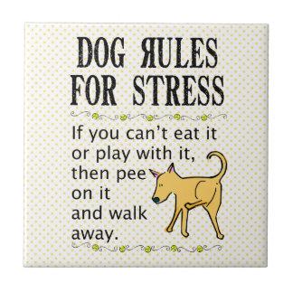 Reglas del perro para la tensión azulejo cuadrado pequeño