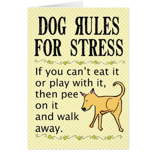 Reglas del perro para la tensión felicitacion